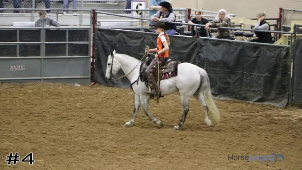 2020 San Antonio Horse