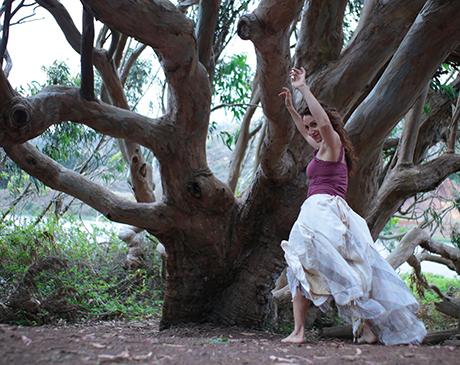 liyana_tree