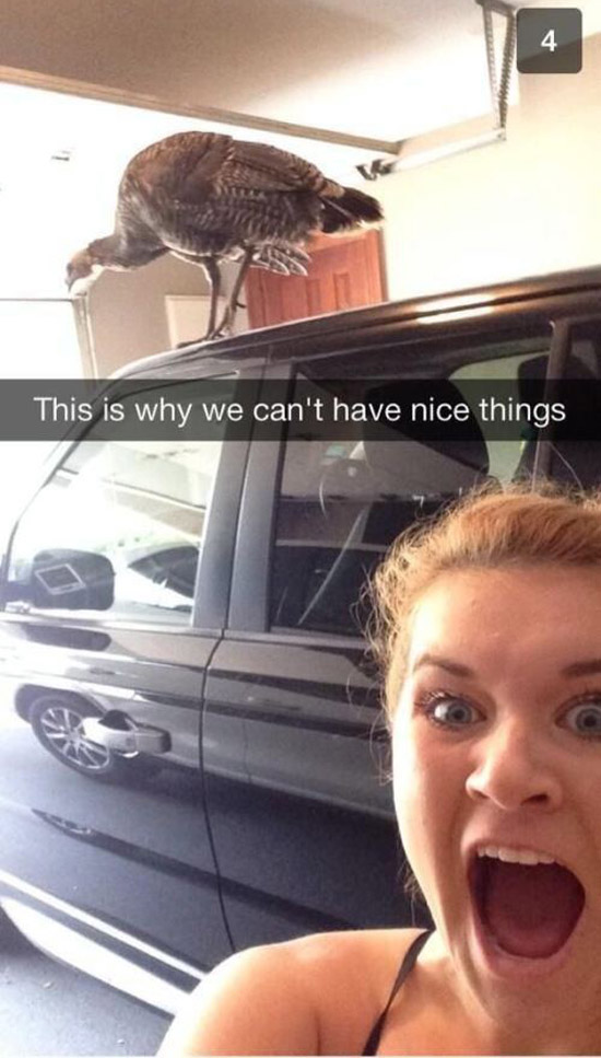 Of The Funniest Snapchats Ever Sent Grabberwocky - 27 creative snapchats will ever see