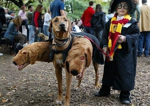 3 - 100 Best Halloween Costumes