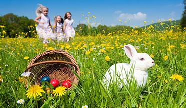 Egg-cellent Easter Savings