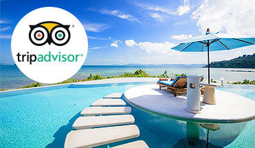 TripAdvisor Reviews and Ratings