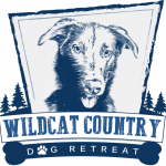 Wildcat Country Dog Retreat