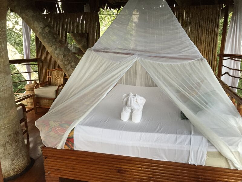 Remarkable Treehouse 8 In Amazon Jungle At Treehouse Lodge Private Dailytribune Chair Design For Home Dailytribuneorg
