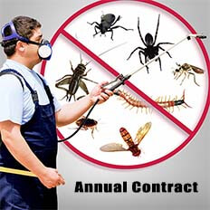 Pest Control - Annual Contract (AMC)