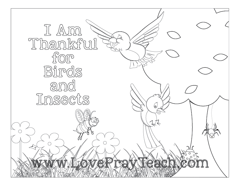 Primary1-Sunbeams-Lesson13-I-Am-Thankful-for-Birds-and-Insects