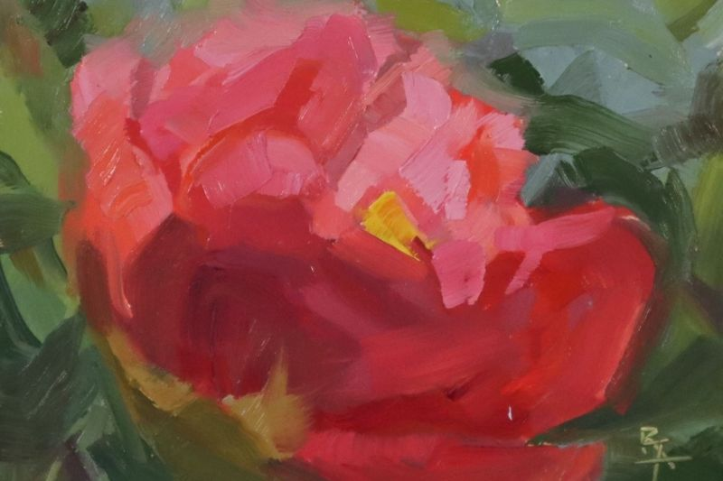 Painting of a Peony by Rebecca Fiske