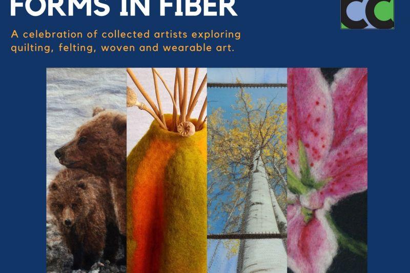 Forms in Fiber