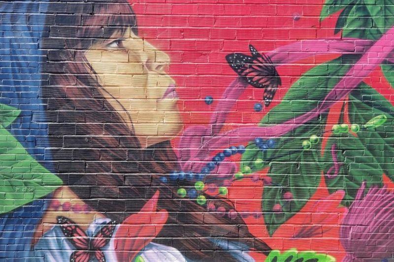 Wall Mural by Daniel Toledo