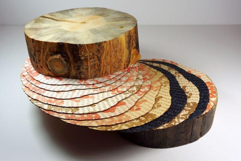Below the Bark: Artworks of Disturbance Ecology