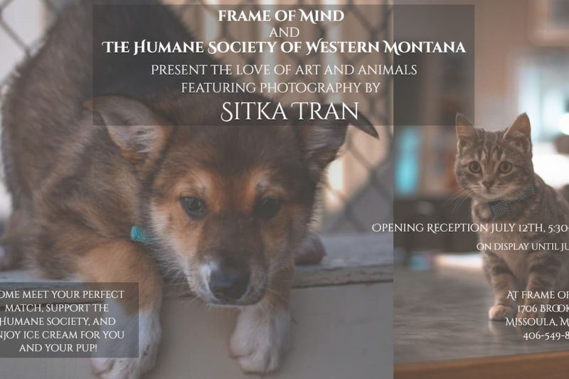 Second Friday with The Humane Society's Sitka Tran