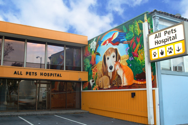 All Pets Hospital, San Francisco, CA - Localwise business profile picture