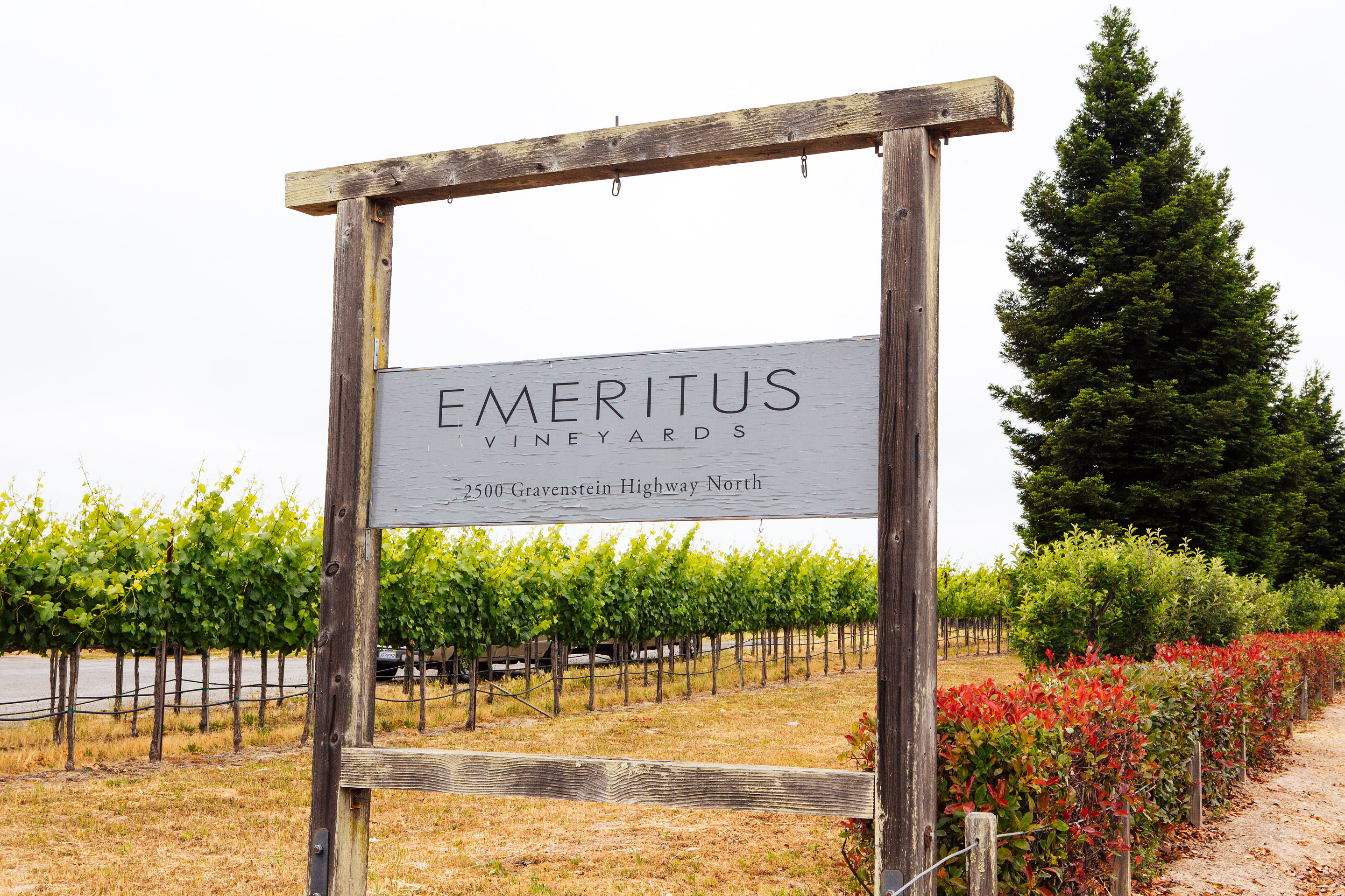 Emeritus Vineyards, Sebastopol, CA - Localwise business profile picture