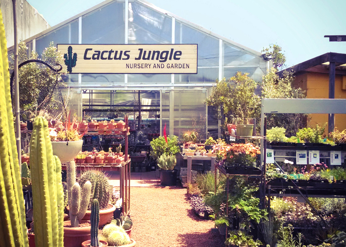 Cactus Jungle Nursery and Garden, Berkeley, CA logo