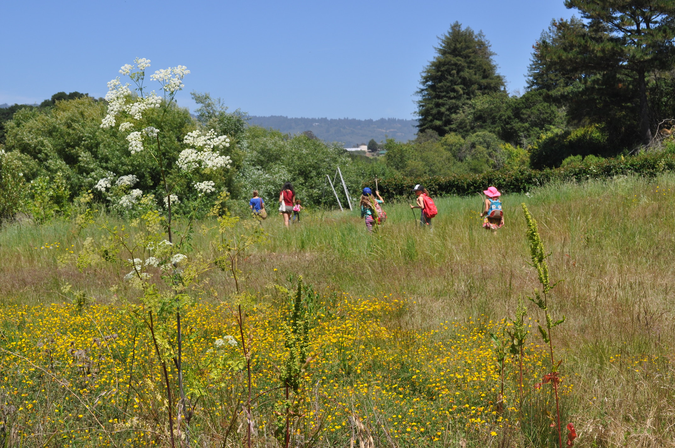 Farm Discovery at Live Earth, Freedom, CA - Localwise business profile picture