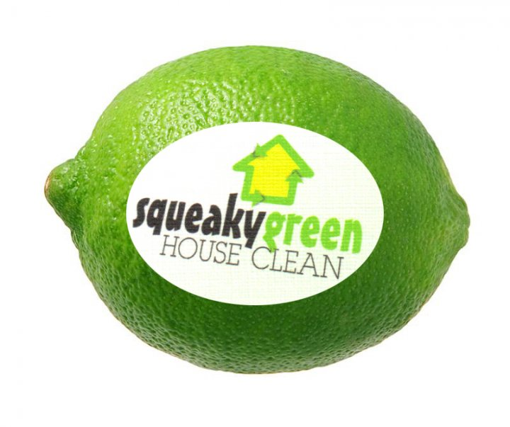 Squeaky Green House Clean, Berkeley, CA - Localwise business profile picture