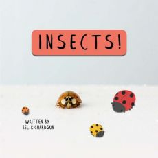 Insects!