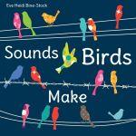 Sounds Birds Make