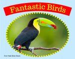 Fantastic Birds
