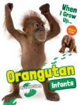 Orangutan Infants