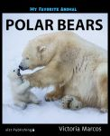 My Favorite Animal: Polar Bears