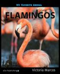 My Favorite Animal: Flamingos