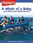 Reading Quest - A Whale of a Baby and Other Real Whale Stories