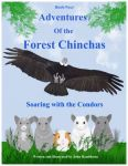 Adventures Of The Forest Chinchas: Soaring With The Condors
