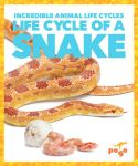 Life Cycle of a Snake