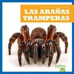 Las arañas tramperas (Trapdoor Spiders)