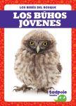 Los búhos jóvenes (Owlets)