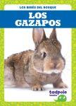 Los gazapos (Rabbit Kits)