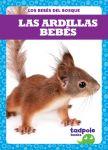 Las ardillas bebés (Squirrel Kits)