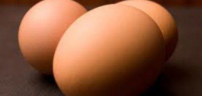 Rose Acre Farms Egg Salmonella Outbreak