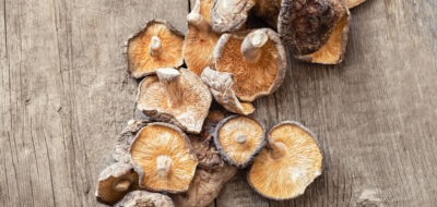 Wood Ear Mushrooms Linked to Salmonella Outbreak