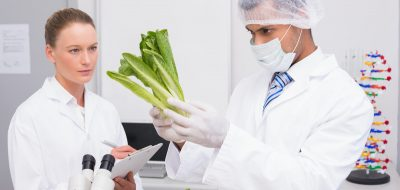 Marler Clark retained by victims of 2019 E. coli lettuce outbreak.
