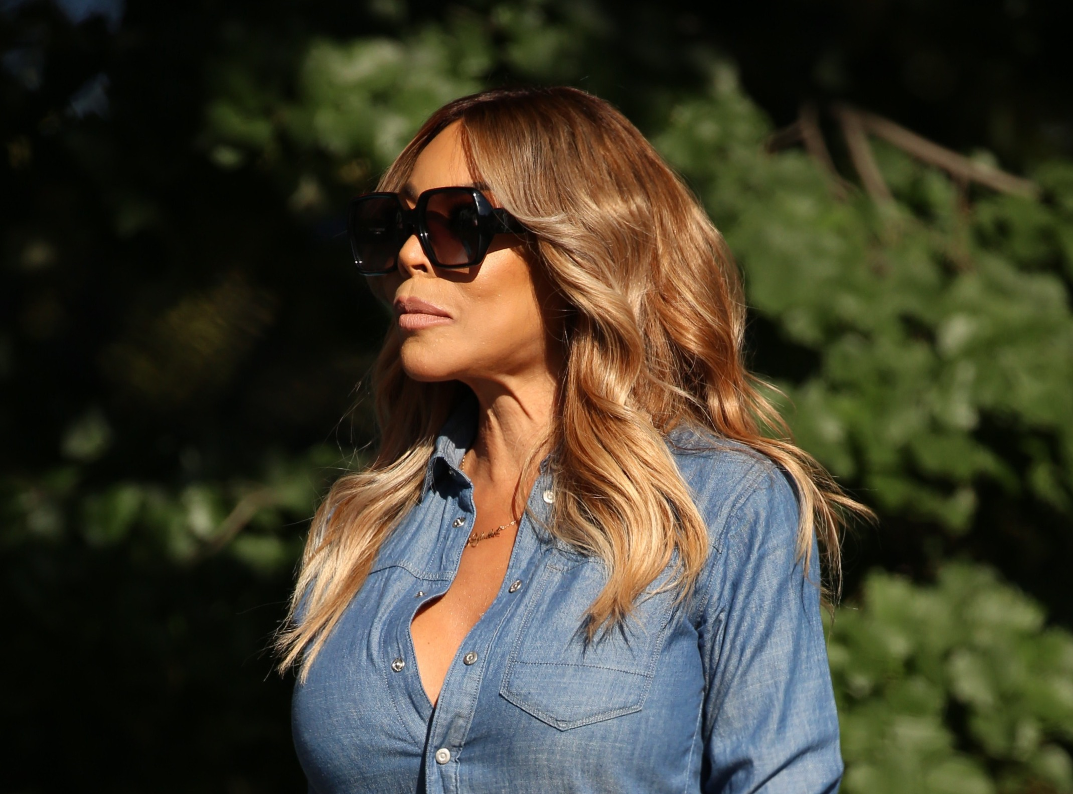 Wendy Williams Announces 'Extended Break' From Show Due To ...