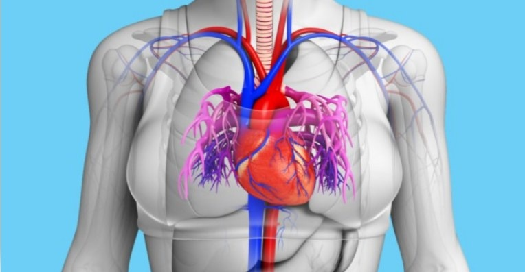 A Month Before a Heart Attack, Your Body Will Warn You With These 8 Si