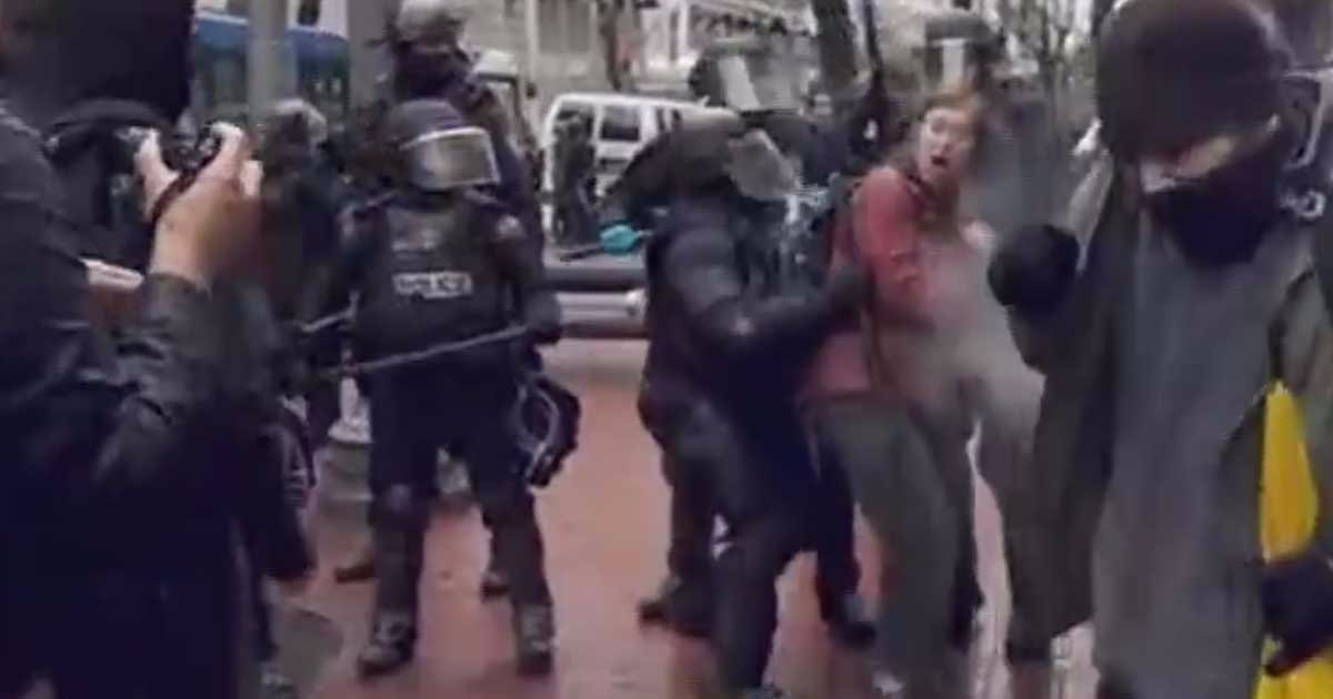 Video: Portland Protester Takes On Police Alone, Gets Disappeared