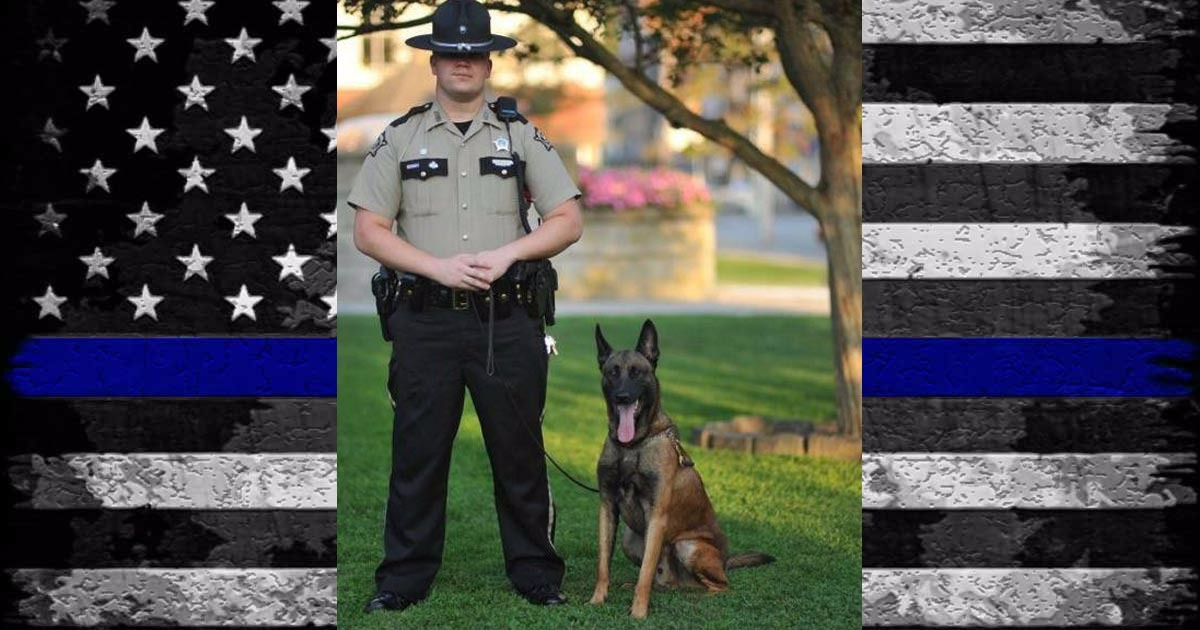 Hero Down: Bell County K9 Officer Kane Killed In Accident