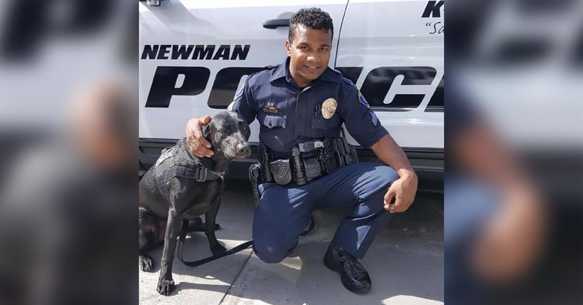 Department Retires Cpl. Singh's K9 Partner So She Can Comfort His Widow And Son - Blue Lives Matter