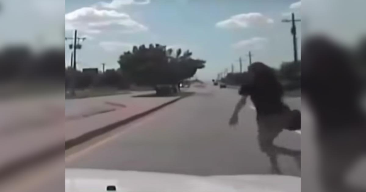VIDEO: 'Don't Hit Her' *THUNK* Oops – Cop Runs Into Suspect During Pursuit
