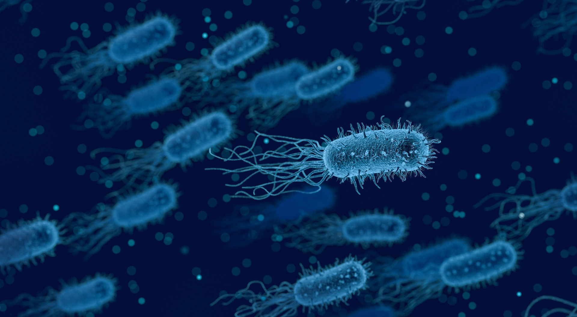 New Immunotherapy Study Poses Question Can Microbiome Influence Treatment