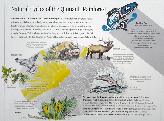 10 Things You Should Know About the Quinault Nation