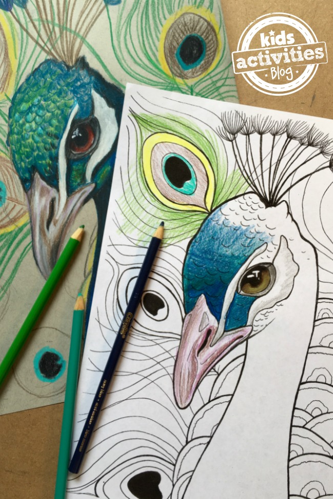 Peacock Coloring Pages For Kids Kids Activities