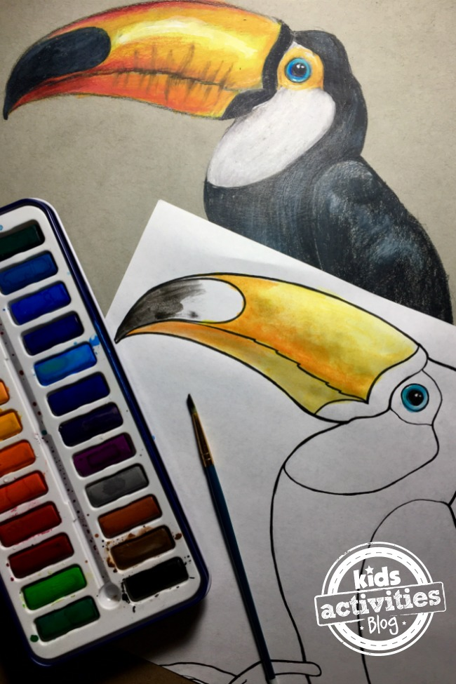 toucan coloring pages for kids and adults  kids activities