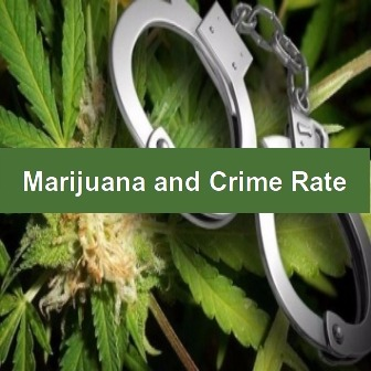 essay on why cannabis should be legalized the weed blog shutting down marijuana dispensaries increases crime rate