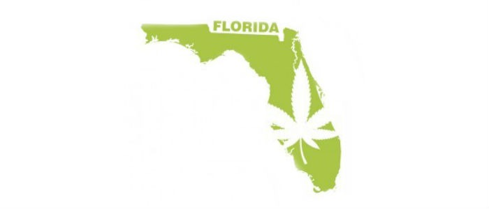Florida Appeals Rejects Smokable Medical Cannabis – Legal Battle Continues