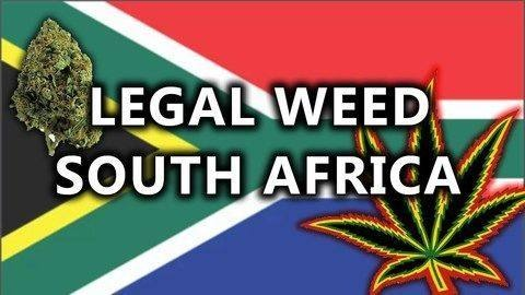 South Africa's Highest Court Legalizes Private Cannabis Use for Adults