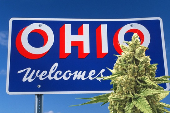 Ohio's First Legal MMJ Crop Being Harvested – Soon to Be Available for Patients